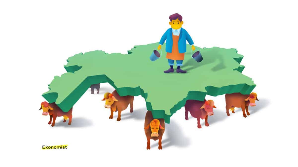 10 коров Казахстана: НацФонд, ЕНПФ, Самрук и другие
