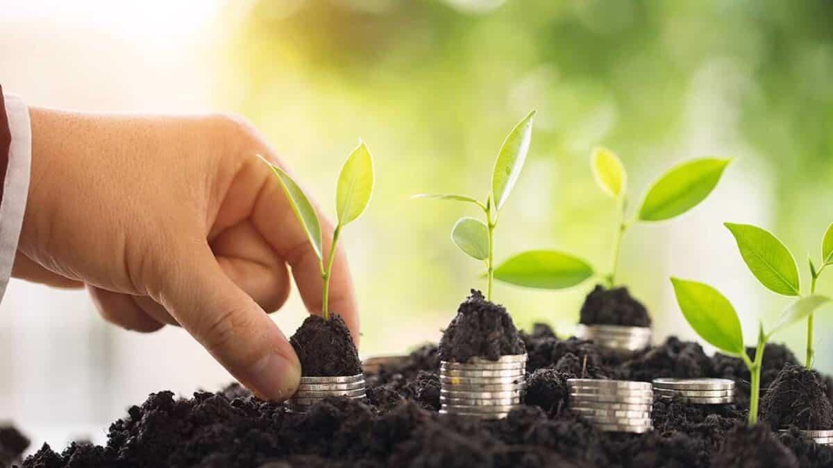 Зеленый аспект реструктуризации суверенных долгов